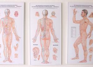 Akupunkturtafeln der Orthopädiepraxis Schlosser in Treptow